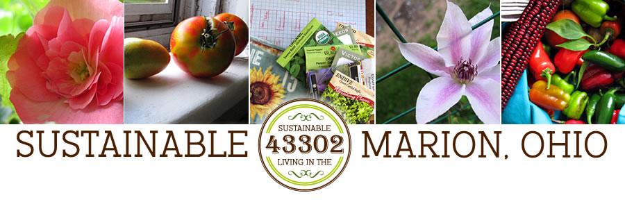 Sustainable Marion, Ohio